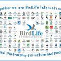 Carta delle organizzazioni partner di Birdlife International