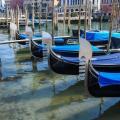 acqua-venezia