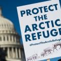 arctic-refuge