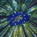 programma-life