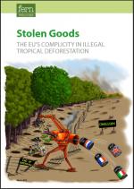 stolengoods-fern.png