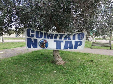 comitato-no-tap-ulivi.jpg