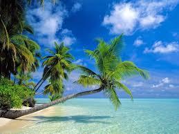tropici-spiaggia.jpg