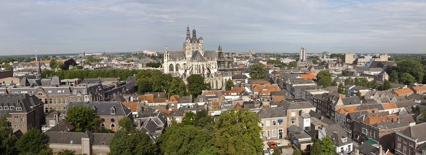 hertogenbosch-panorama-gezichtopsintjanvanafsintjacobskerktoren-rce.jpg