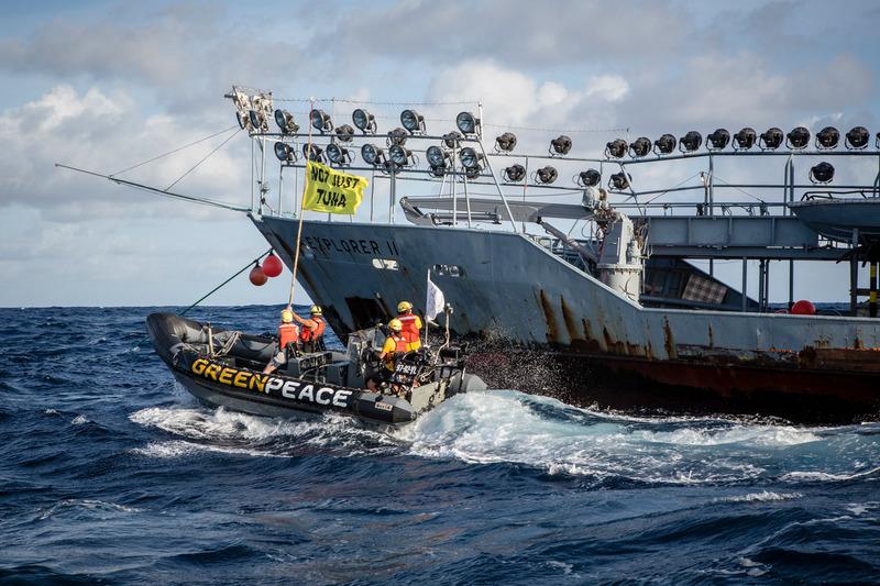 greenpeace-contro-pesca-tonno.jpg