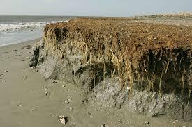 erosionespiagge.jpg