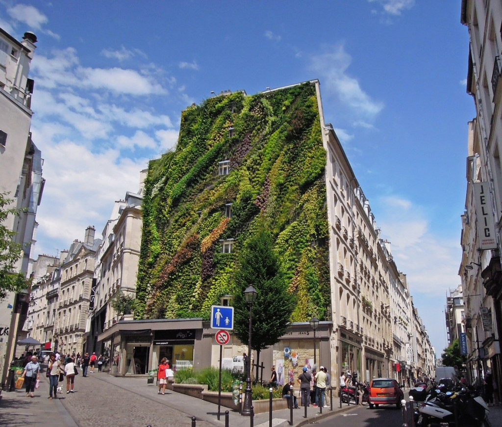 giardino-verticale.jpg
