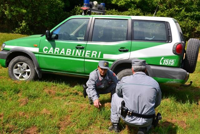 carabinieri-forestali.jpg