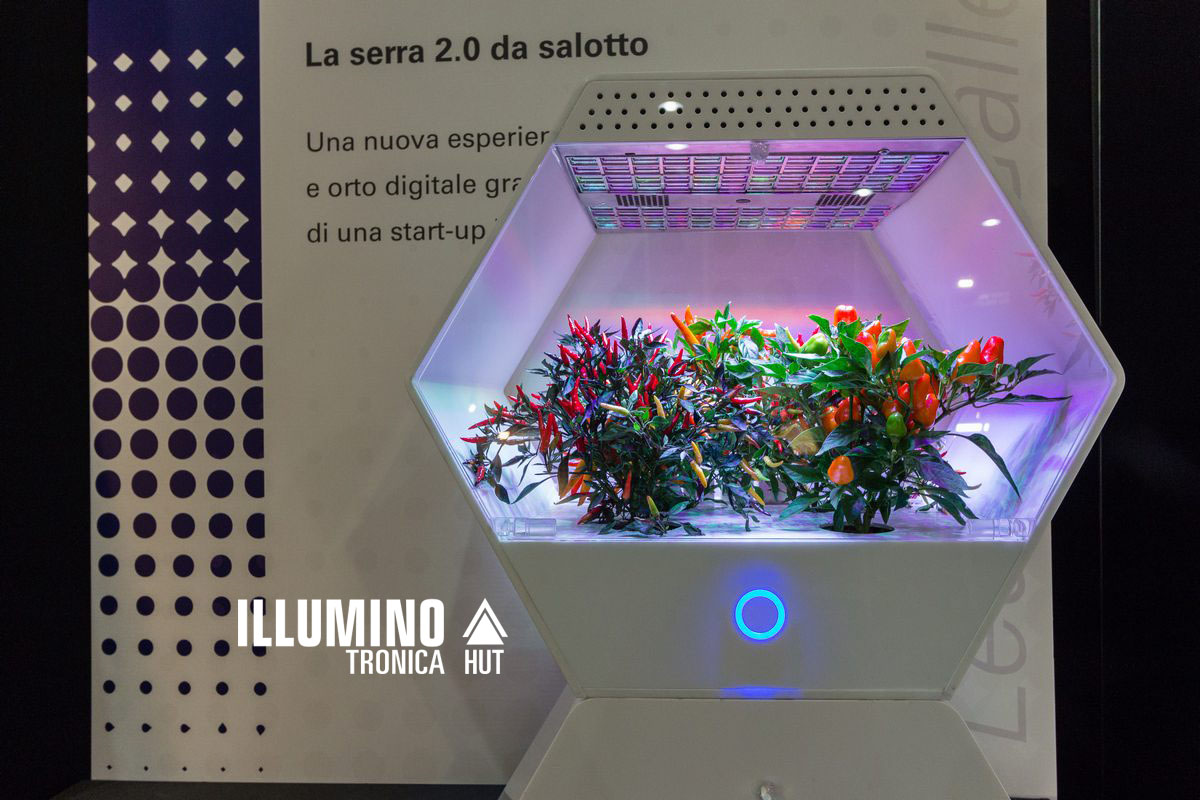 illuminotronica-2016-giochi-luce.jpg