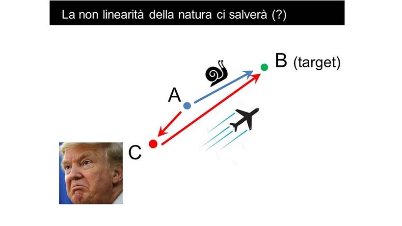 lifegate-non-linearita-natura.jpg