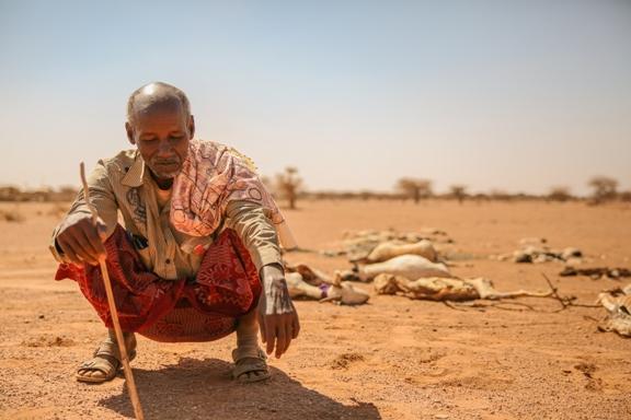desertificazionesiccita.jpg