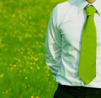 green-manager.jpg