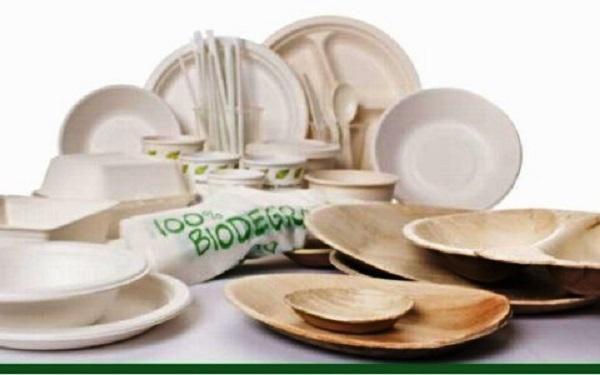 stoviglie-biodegradabili.jpg