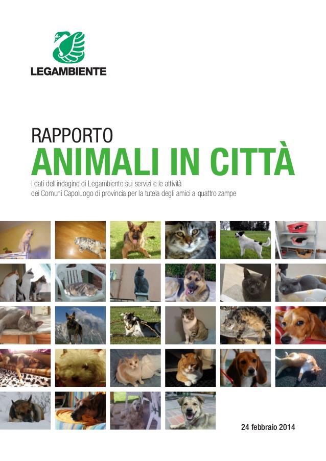 rapporto-animali-citta.jpg