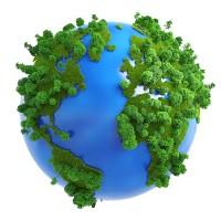 forestazione-mondo.jpg