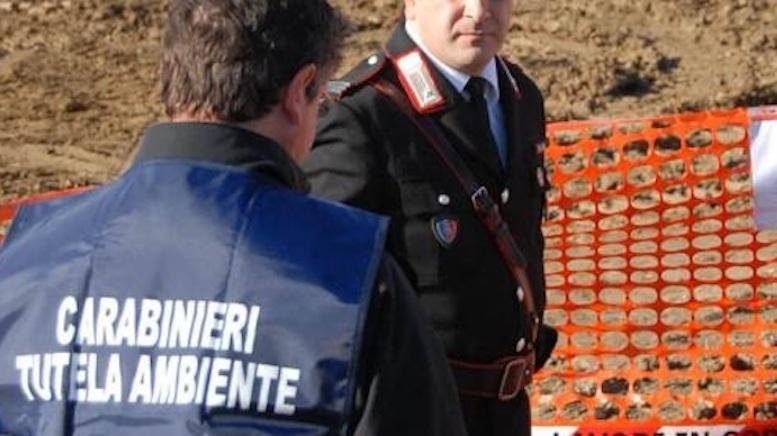 carabinieri-noe-tutela-ambientale.jpg