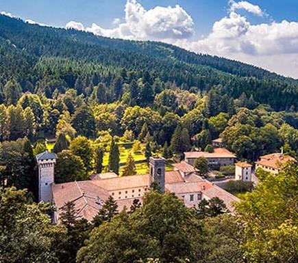 foreste-italiane.jpg