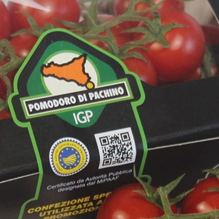 pomodoro-pachino.jpg