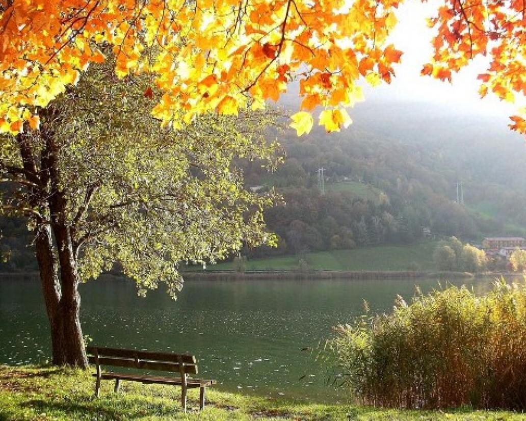 autunnomite.jpg
