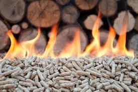 caldaia-biomasse.jpg