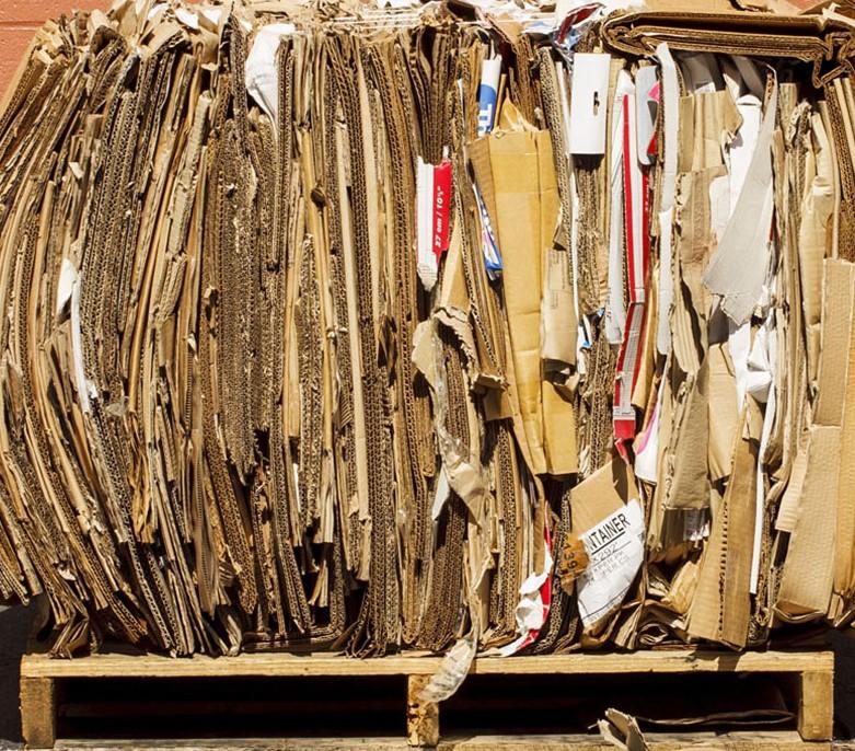 rifiuti-carta.jpg