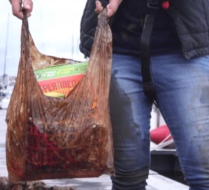 buste-biodegradabili.png
