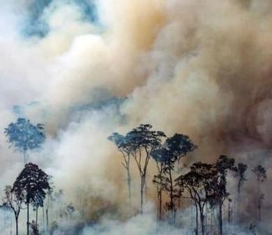amazzonia-700x336.jpg