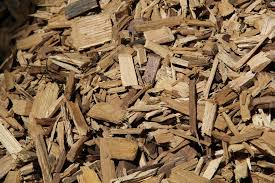 biomasse-legnose.jpg