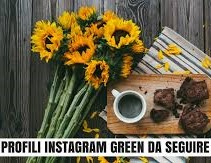 instagram-green.jpg