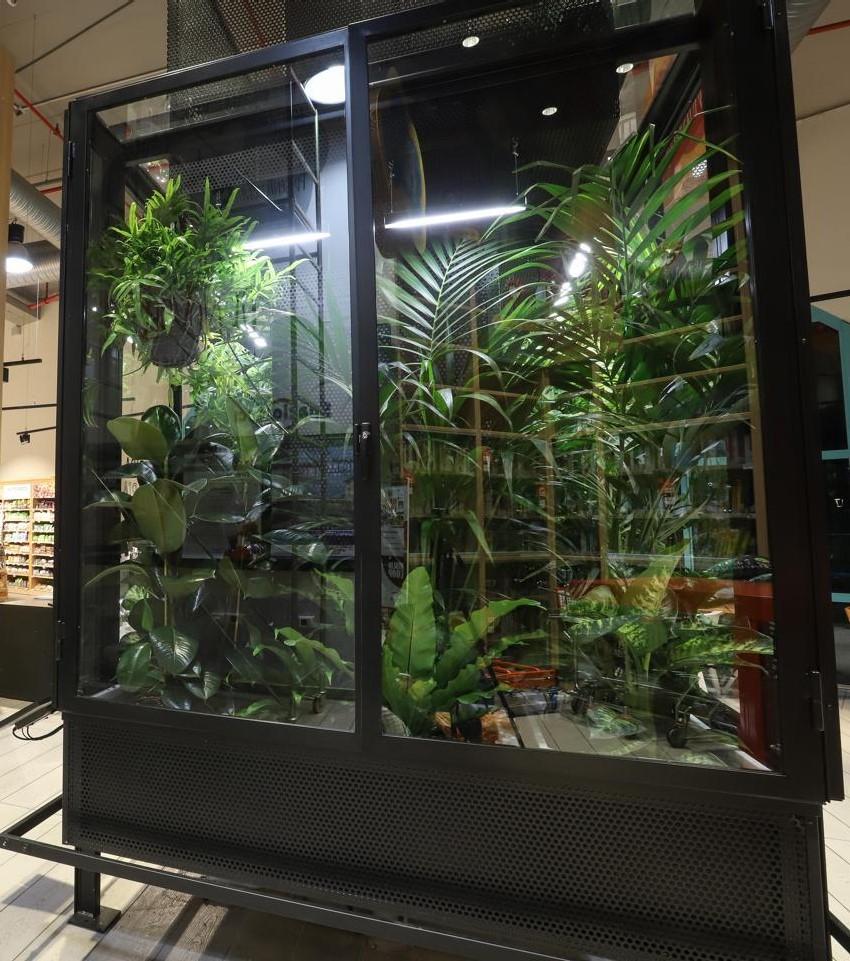 piante-coop.jpg