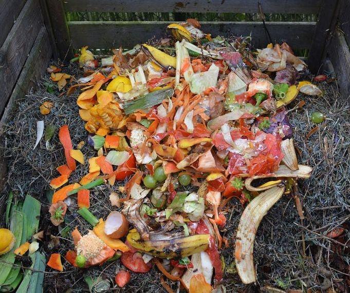 compostaggio.jpg