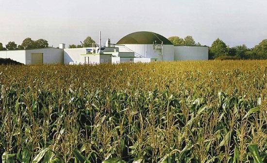 biomasse-impianto.jpg
