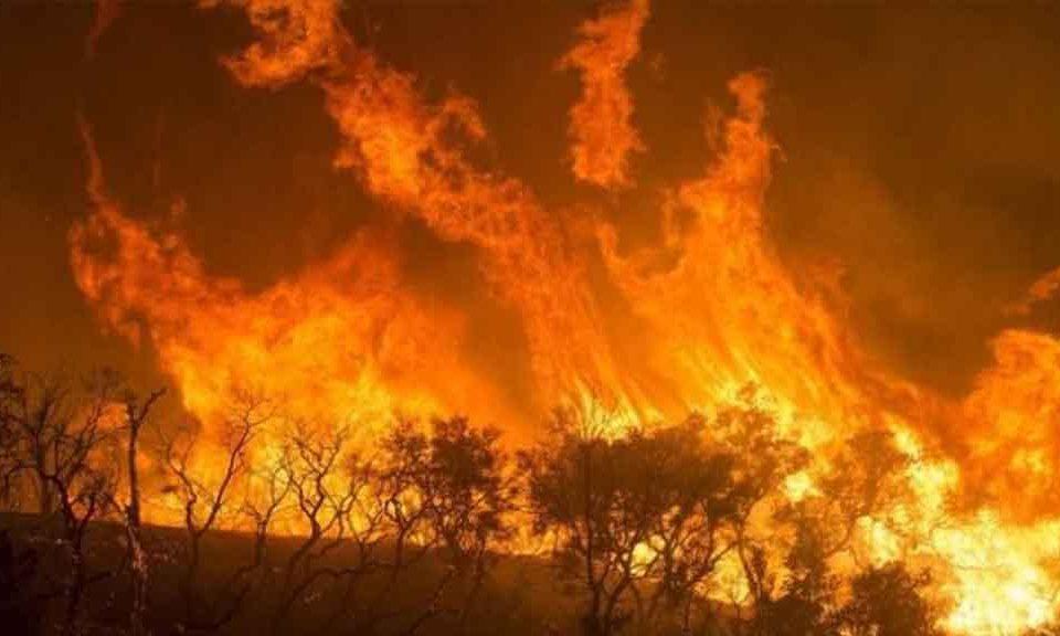 incendio-africa.jpg