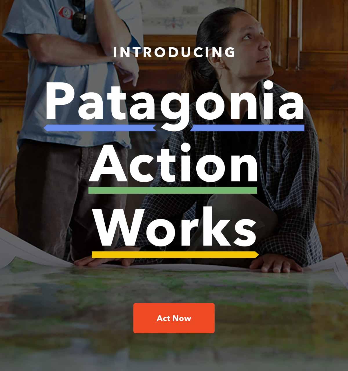 patagonia-action.jpg