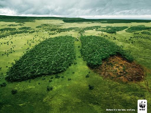 natura-wwf.jpg