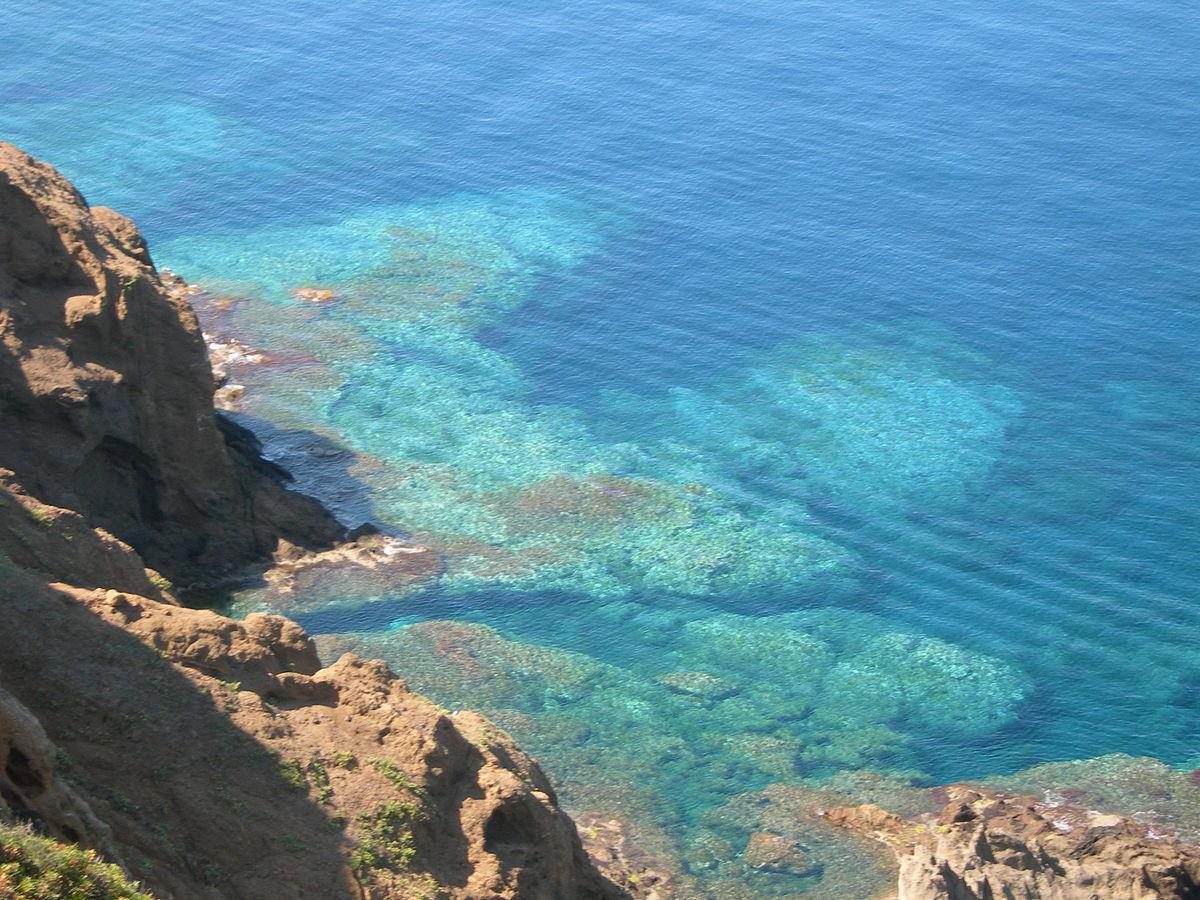 ustica-riserva-marina.jpg