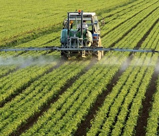 pesticidi.jpg
