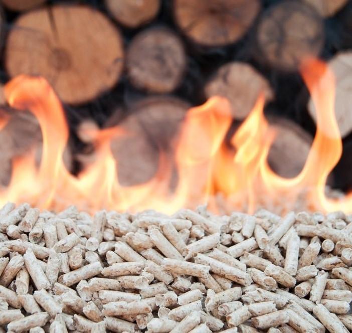 combustione-biomasse.jpg