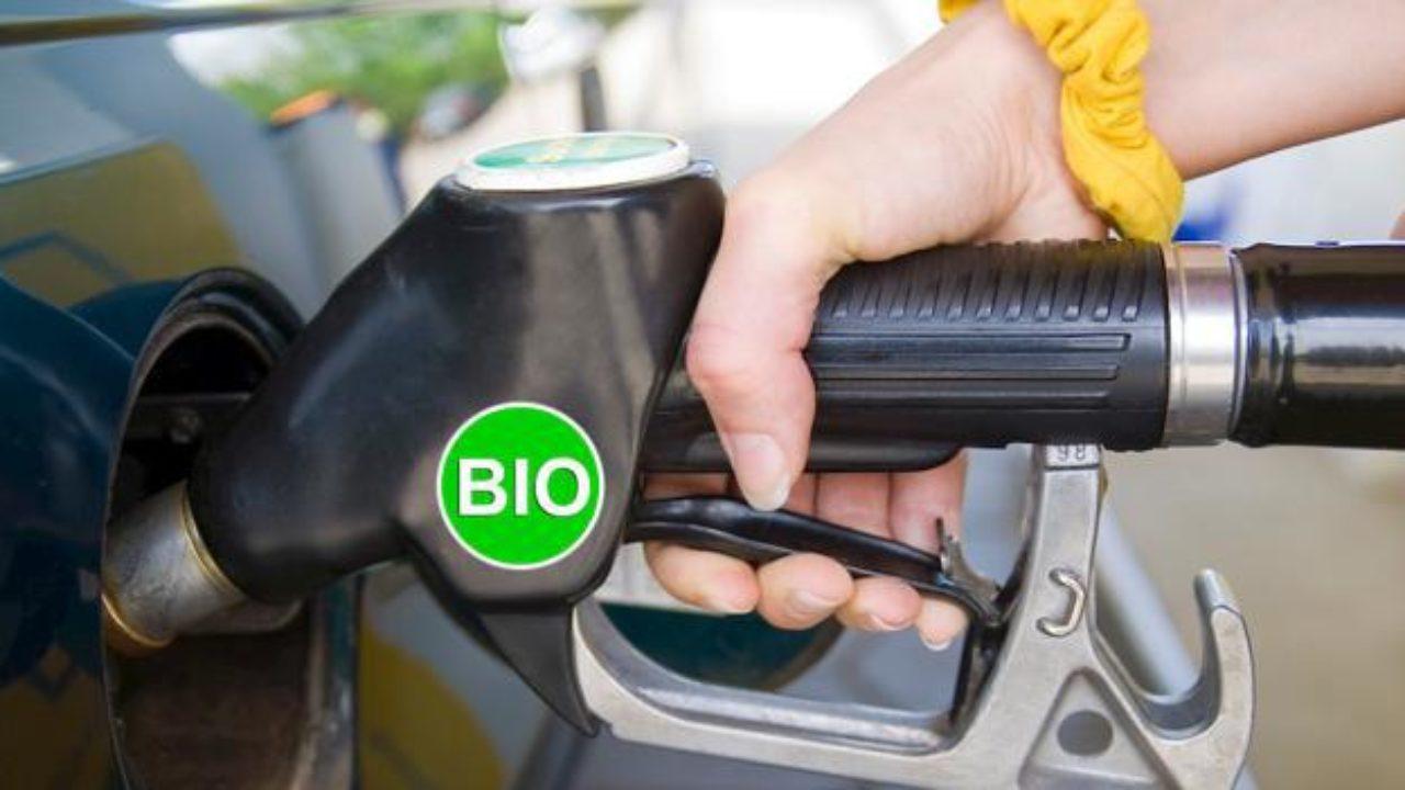 biodiesel.jpg