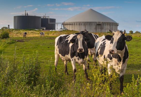 agricoltura-circolare.jpg