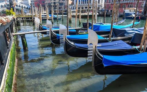 acqua-venezia.jpg