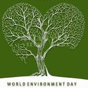 world-environment.jpg