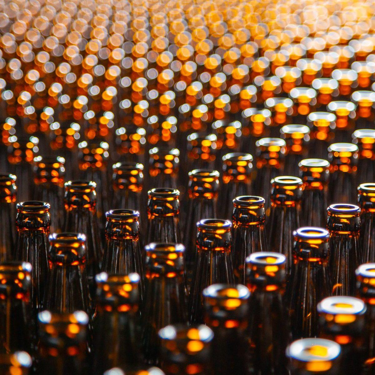 bottiglie-vino.jpg