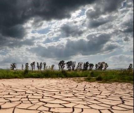 distruzione-ecosistemi.jpg