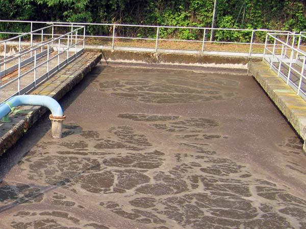 fanghi-depurazione.jpg