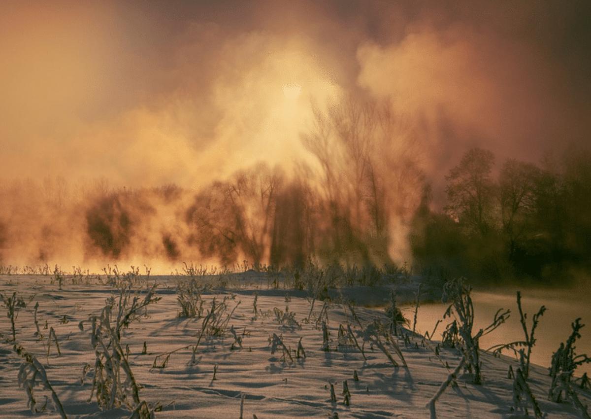 incendi-circolo-artico.png
